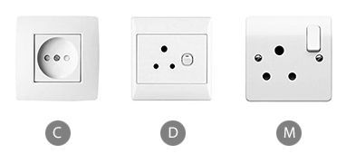 Which plug adapter will you need when using a clothes iron in India?